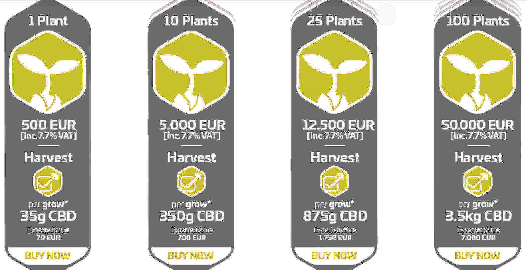 cannergrow plant sale