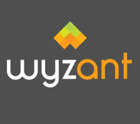wyzant summary review